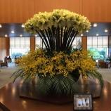『桃花林(ホテルオークラ神戸)でのランチ』の画像