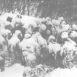 『【八甲田雪中行軍遭難事件】今の技術なら遭難者は出なかったのだろうか?』の画像