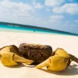 『与那覇前浜ビーチと来間島』の画像