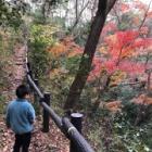 『【おでかけ】ほんとの森は、怖かった。』の画像