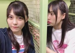 賀喜遥香&柴田柚菜、相思相愛・・・?!wwwww