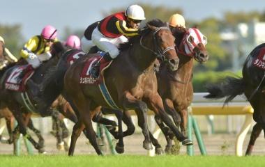 『【毎日王冠結果】シュネルマイスターが鋭く追い込んで重賞2勝目!3年連続の3歳馬V』の画像