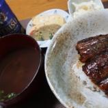 『土用の丑・二の丑の日'2020~阪急百貨店の宮崎県産鰻の「蒲焼き丼」』の画像