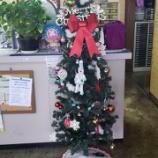 『【大映ミシンの店内がクリスマス雰囲気になりました】大きなクリスマスツリーが店内に飾ってあります!』の画像