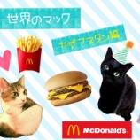 『【世界のマック】を食べてみよう!【カザフスタン編】』の画像