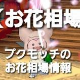 『【お花相場】プクモッチのお花相場情報1/5』の画像