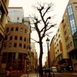 『2021年1月28日(木)、小雨模様の桜木町→馬車道を歩いて来る、ほか』の画像