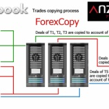 『Anzo Capital(アンゾーキャピタル)では、Myfxbook AutoTradeを使ってコピートレードができる!その方法を詳しく解説!(その3)』の画像