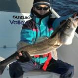 『東京シーバス54【今年の釣り納め?】』の画像