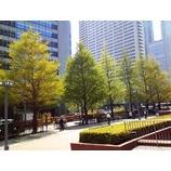 『新緑の季節』の画像