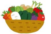 重度の野菜嫌いだったけど今なら食えそうな気がしたから頑張った結果
