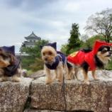 『秋の忍者遠足@伊賀上野城🏯 📝』の画像