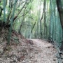 河内貯水池から登る皿倉山