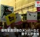 スペイン人「闘牛は動物虐待だ!禁止しろ!」 マドリードで大規模デモ