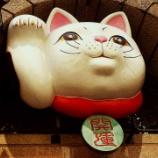 『ポカポカ陽気の春の日に中華街→関内→馬車道と横浜の街を歩いて来る』の画像