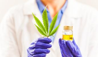 アメリカ「大麻って.....」カナダ「もしかして健康にいい?」日本→