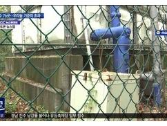 どれだけ韓国が危険な国かこれを見ればアホでも理解できる