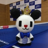 『BIG SPORTS AWARD 第51回 ビッグスポーツ賞 2016』の画像