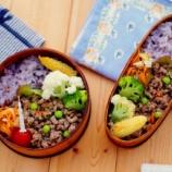 『みじん切り野菜入りのひき肉バジル炒めの息子弁当』の画像