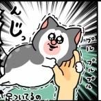 水が怖いくせにやたら風呂場で甘えたがる猫