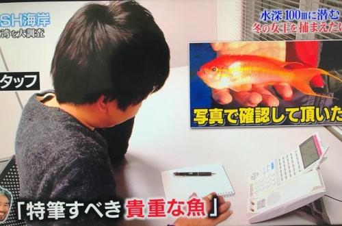 TOKIOさん、また論文発表レベルの歴史的大発見をしてしまうwwwwwのサムネイル画像