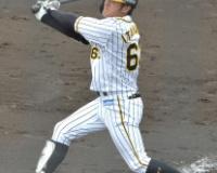 【阪神2軍】板山選手が同点ホームランを含む2安打2打点!!