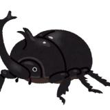 【朗報】カブトムシ、ガチのマジで美味すぎるwwww