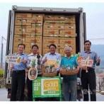 中国が輸入停止した「台湾産パイナップル」を日本の大手スーパー西友などが大量購入