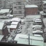 『戸田市が真っ白に! #todacity』の画像
