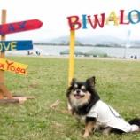 『BIWAKO x SUP x YOGA 2019に行って来ました☆』の画像