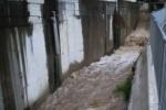 倉治、星田地区などに避難準備が発令、土砂災害を警戒して避難所も開設〜台風21号の今後の動向にご注意ください〜