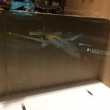 『羽田(HND)-ホーチミン(SGN) JL79 初のJAL B787しかもビジネスクラス搭乗記』の画像