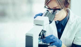 【角膜再生クル━(゚∀゚)━!!】大阪大学とロート製薬、 iPS細胞から眼の様々な細胞の選択的誘導に成功