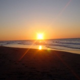 『中田島砂丘の初日の出には臨時バスが運行!あらゆる場所から日の出時間にちゃんと現地につけるぞ!』の画像