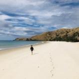 『コルマンデル半島の穴場オタマビーチへ』の画像