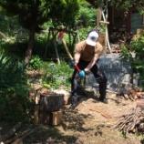 『薪割りの仕事』の画像