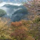 『吉野から洞川温泉に』の画像