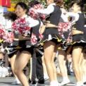 第17回湘南台ファンタジア2015 その36(明治學院大学應援團部)