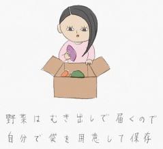 野菜の保存袋を買って思ったこと