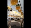 ワイ、飛行機の緊急降下アラーム音が怖すぎて咽び泣く