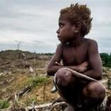 『プロミス:先住民族虐殺を止めるため』の画像