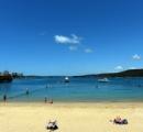 ペットの犬、サメに連れ去られる 豪シドニーの人気ビーチ