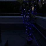 『イルミネーション点灯』の画像