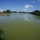 生物多様性への理解があるため池除染