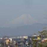 『3月の東大和②』の画像