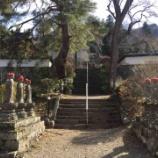 『【長野】種月院長谷寺の御朱印』の画像