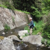 東吾妻村の渓流を気ままに探釣 2013.5.13の写真