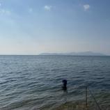 『小鮎と遊ぶ 50(2021/5/29 浜釣りの〆は北小松)』の画像