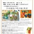 こころやカフェ体験教室「~多肉植物大好きtaka先生の~多肉植物の寄せ植え教室」を開催します