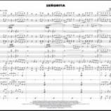 『【海外】スコア見ながら聴ける新譜紹介! 2020年ハル・レオナルド『セニョリータ』音源&スコア動画です!』の画像